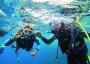 【Let's 潜水,暑期多个团期可选】 在这个初夏潜逃到另一个充满不同色彩,环境和稀奇古怪的新世界!