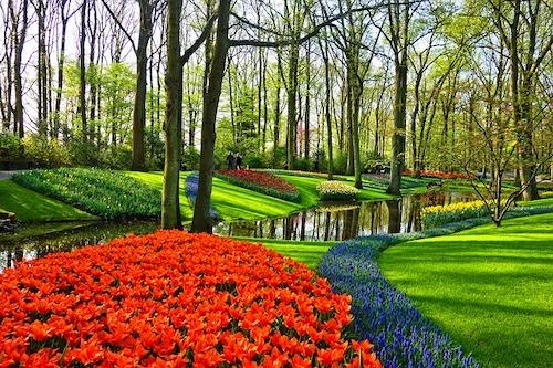 garden-3345970_640