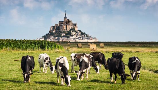 View of the Mont Saint Michel