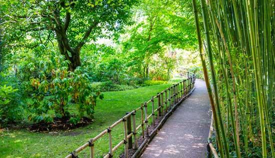 吉维尼花园